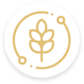 icon-rurais