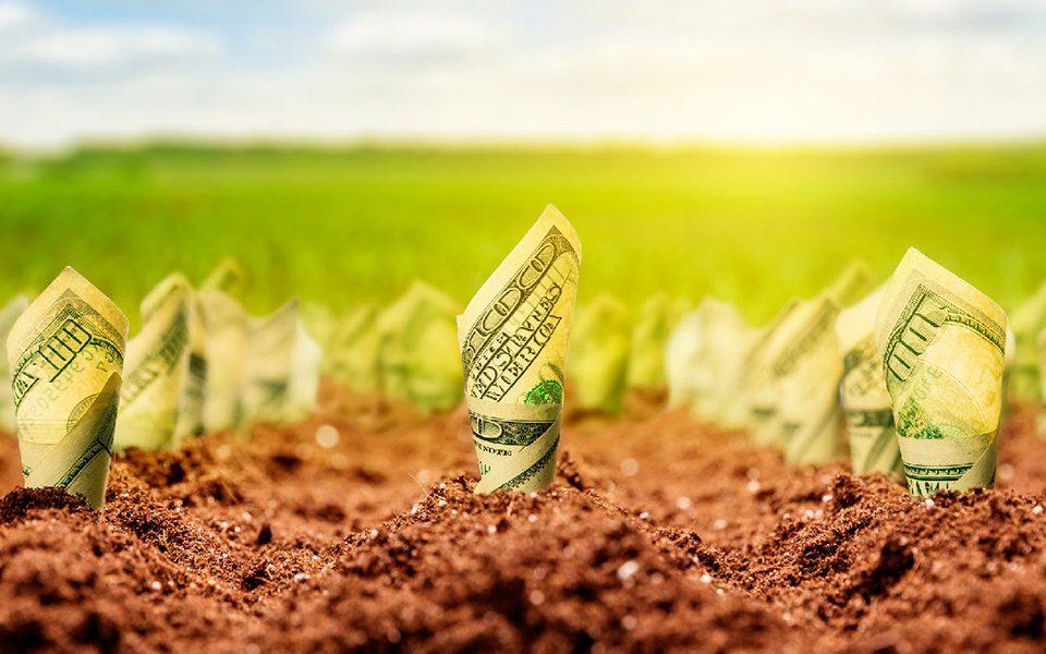 Cédula de crédito rural: 7 motivos para o vencimento antecipado